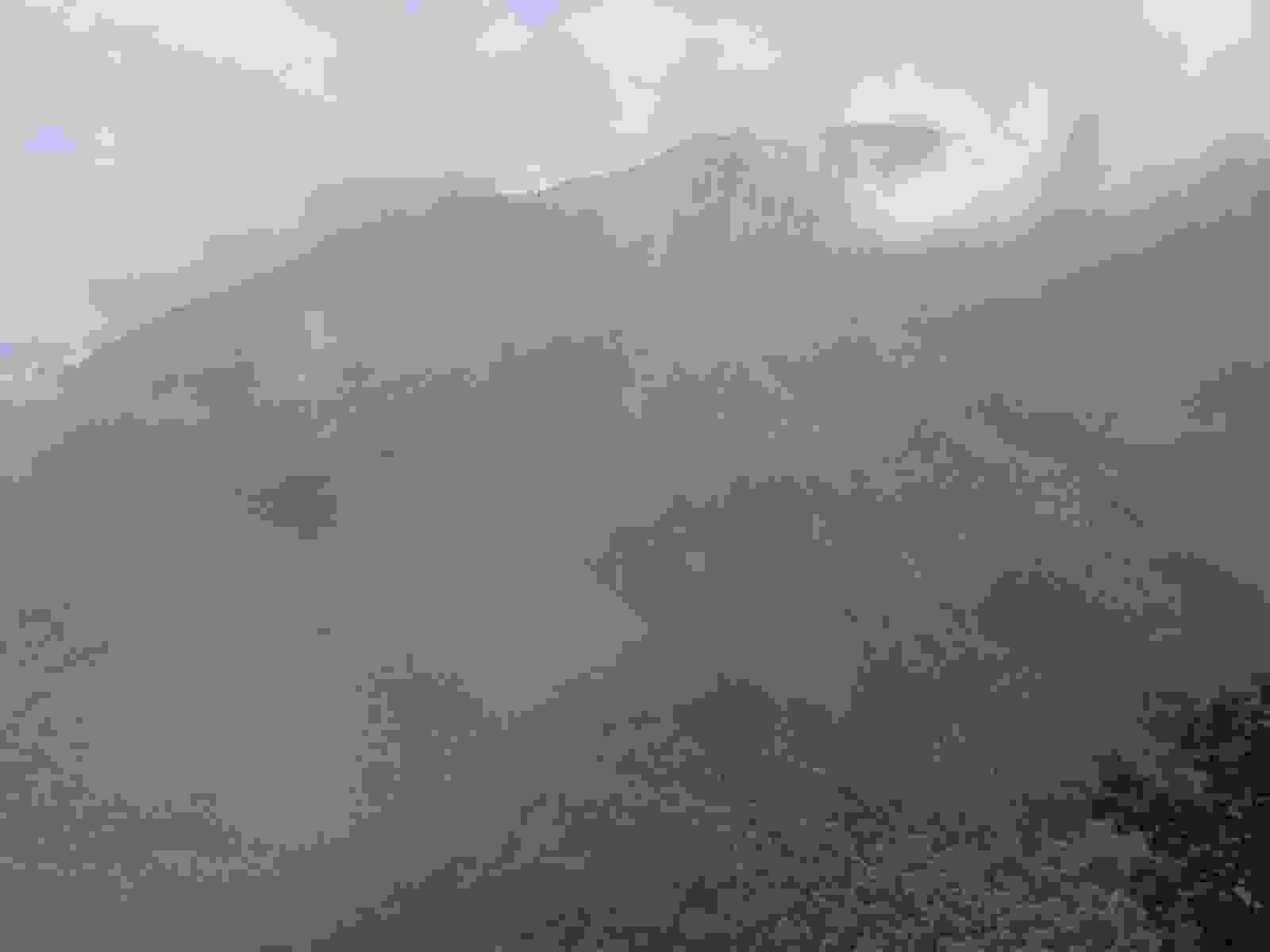 IMG_3426 [1600x1200]