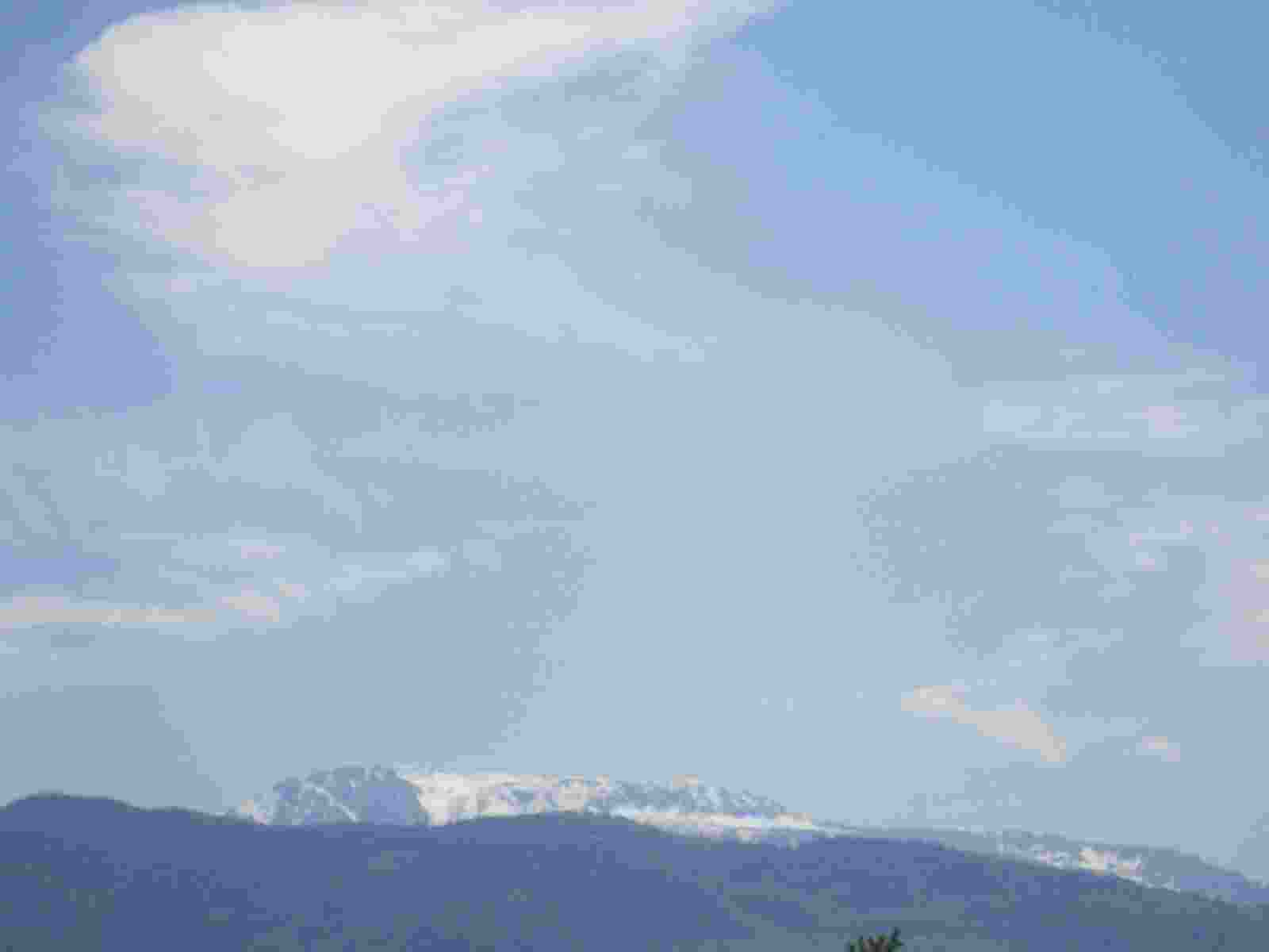 IMG_3262 [1600x1200]
