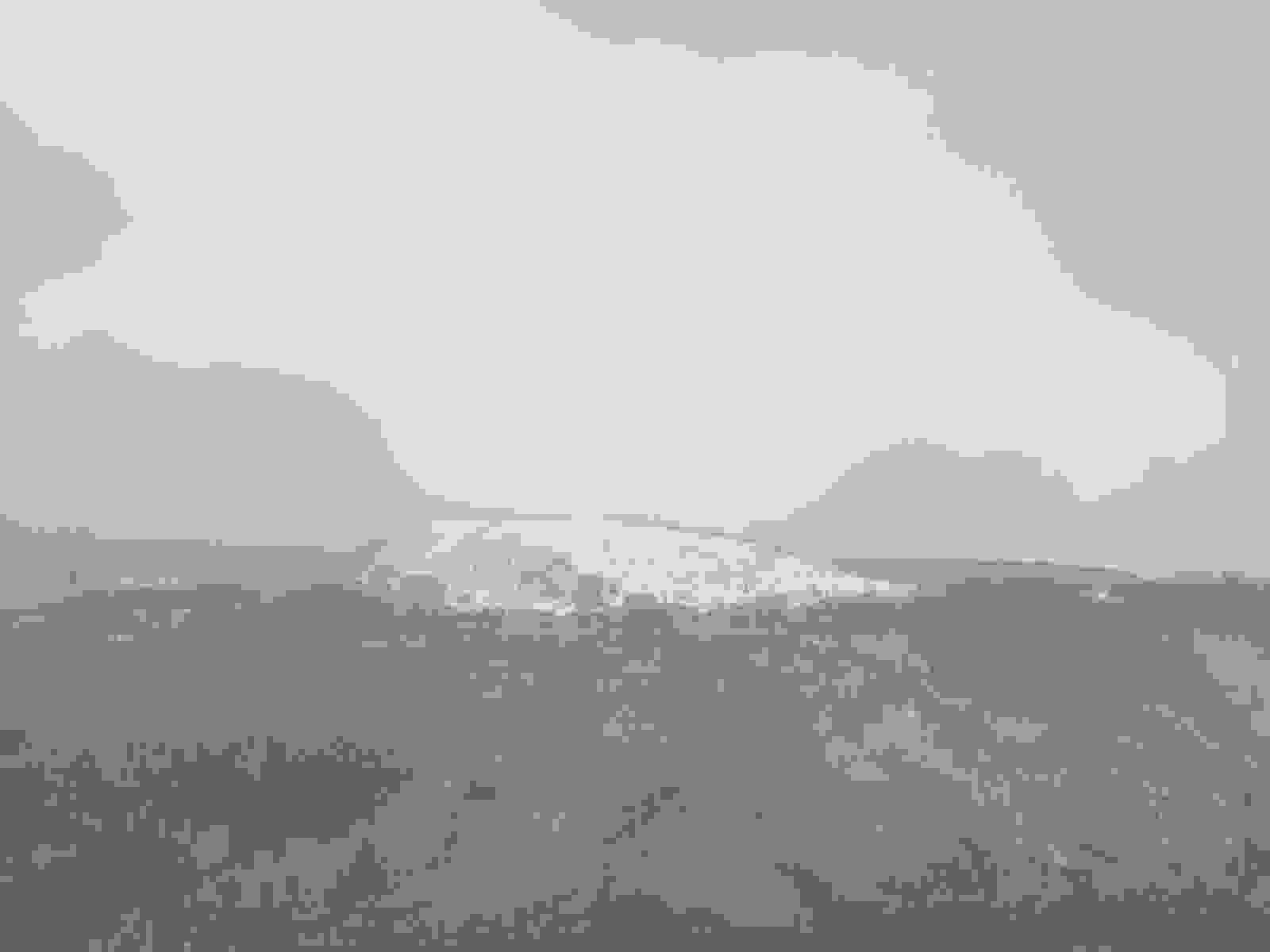 IMG_2616 [1600x1200]