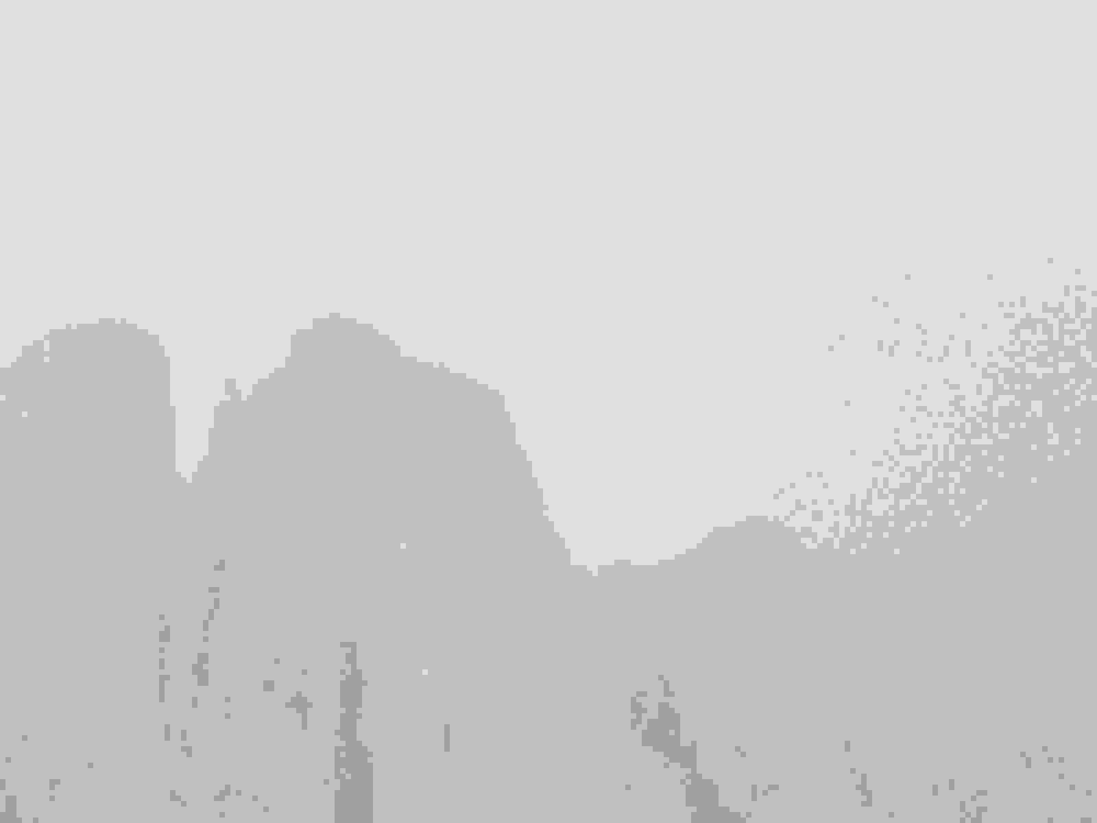 IMG_2621 [1600x1200]