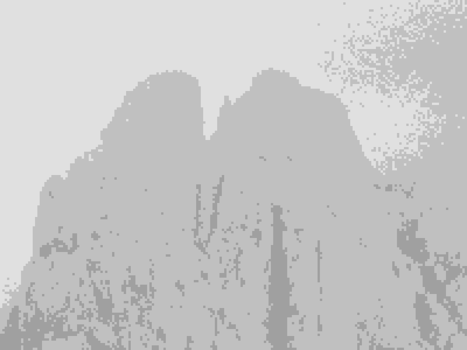IMG_2622 [1600x1200]
