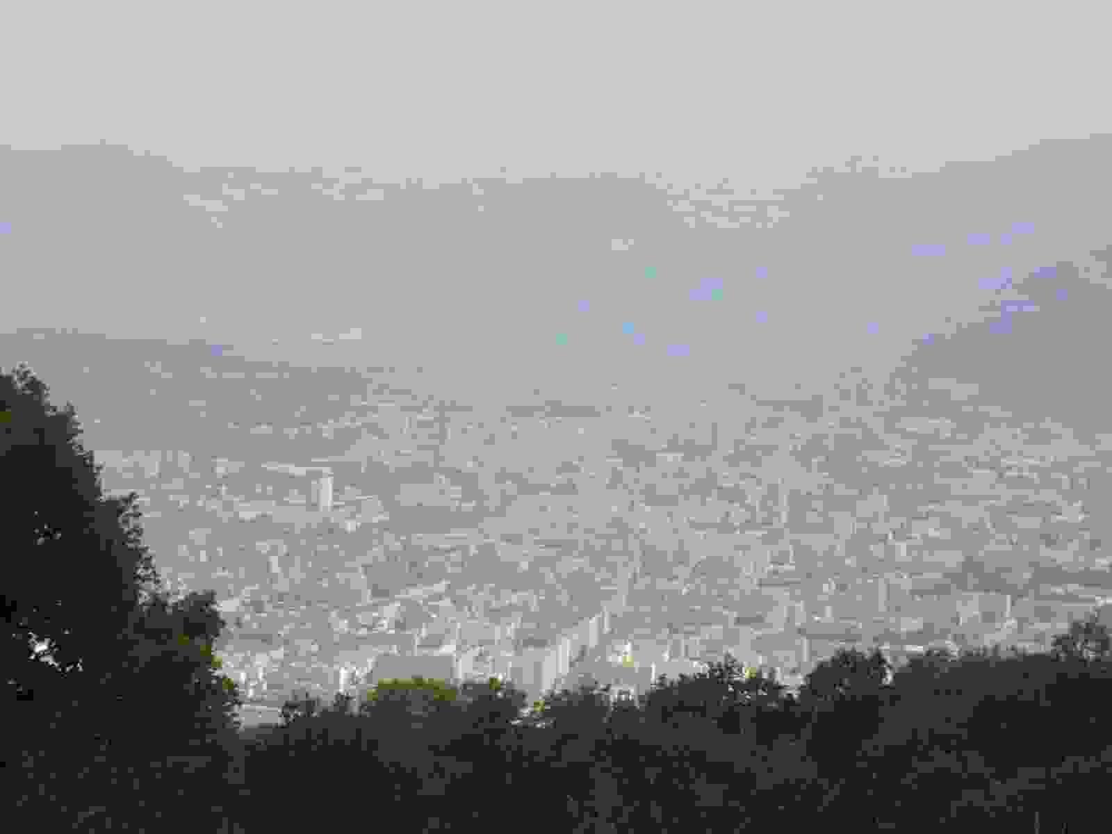 IMG_1781 [1600x1200]